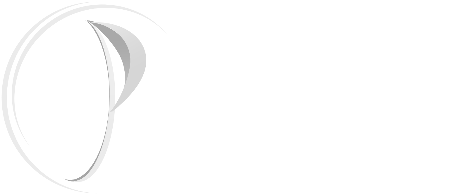 Parvin Asset Management